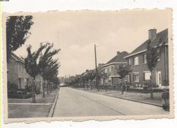 37198  -  Waremme   Avenue Du  Prince  Régent - Waremme