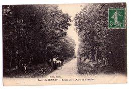 0100 - Quincy Sous Sénart - Forêt De Sénart - Route De La Mare Du Capitaine -  Coll. Saulnier , Tabac , Hotel De La Gare - Autres Communes