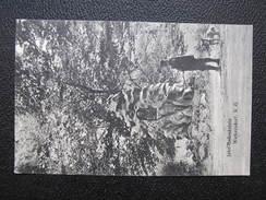 AK WOLKERSDORF B. MISTELBACH 1912  // D*29201 - Mistelbach