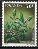 RWANDA - 1988 - Pavetta Ternifolia - USATO - Rwanda