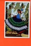 Danse Espagne Danseuse Espagnole ( écrite) - Fantaisie Brodée - Danse