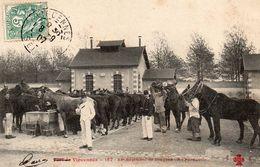 CPA     -     VINCENNES   -    23 E REGIMENT DE DRAGONS   -   A L ' ABREUVOIR - Casernes