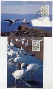 GREENLAND 1990 Birds IV On Two Maximum Cards.  Michel 199-200 - Maximum Cards
