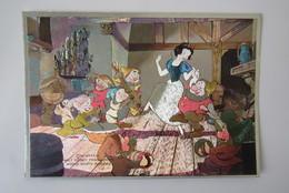 Cpa/pk Disney Productions Snow White Sneeuwwitje Reflecting Card 1970 - Disney