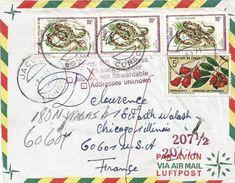 Congo 1971 Jacob Egg-eating Snake Dasypeltis Scabra Liana Flower Connarus Taxed Underfranked Cover - Congo - Brazzaville