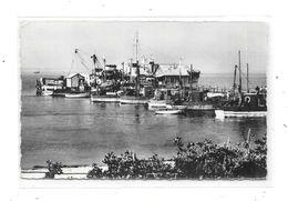 10364 - FROMENTINE : L'arrivée De L'amiral Joinville (Ile D'Yeu, Fromentine) - Francia