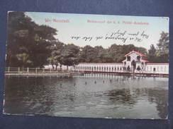 AK WIENER NEUSTADT 1910 /// D*29556 - Wiener Neustadt
