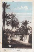 Afrique - Algérie Scènes & Types Une Rue Dans L'Oasis  (- Editions Photos Africaines EPA 2143)  - *PRIX FIXE - - Scènes & Types