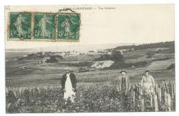 CPA ANIMEE RILLY LA MONTAGNE, VUE GENERALE, ANIMATION DANS LES VIGNES AU PREMIER PLAN, MARNE 51 - Rilly-la-Montagne