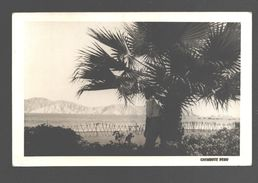 Chimbote - Photo Card - 1956 - Pérou