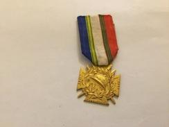 Médaille De La Ligue Des Combattants De L'Aube 1914-1918 - Francia