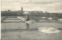44 Batz Sur Mer  Animée   Marais Salants Pres Du Bourg - Batz-sur-Mer (Bourg De B.)