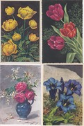 ¤¤  -   FLEURS   -  Lot De 12 Cartes D'Illustrateur  -  ¤¤ - Fleurs, Plantes & Arbres