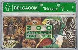 BE.- België. Telecard.- BELGACOM. ZOO ANTWERPEN 1843 - 1993. - 304B72558. ZEBRA. AAP. ARA. PANTER. - GSM-Kaarten, Herlaadbaar & Voorafbetaald