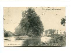 Cp - COGNAC (16) - L'Ile Des Moulins - Cognac