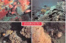 Afrique- DJIBOUTI  Joyaux De La Mer Rouge (A)   (Multi Vues - Poissons Et Coraux )   *PRIX FIXE - Djibouti