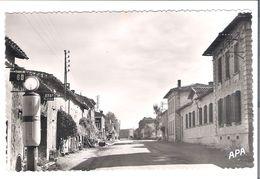 CP  D  81   VILLEFRANCHE D'ALBIGEOIS   Les Ecoles - Villefranche D'Albigeois