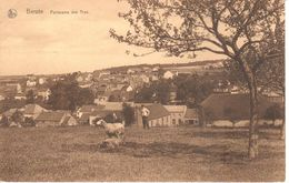 Ham-sur-Heure-Nalinnes - Berzée - Panorama Des Trys - Ham-sur-Heure-Nalinnes