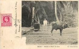 SEYCHELLES MAHE MOULIN A HUILE DE COCO - Seychelles