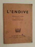 Agriculture L'Endive Production, Vente, Consommation Recette Pub Lille, Paris, Gouzeaucourt, Gif Sur Yvette Grandvillers - Culture