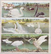 Isle Of Man MNH Set - Swans