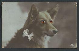 +++ CPA - Carte Fantaisie - Chien - Dog - Yeux De Verre - Noeud Tissu -- 1922  // - Dogs