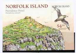 2004 - NORFOLK ISLAND - Mi. Nr. BLOCK 30 - NH -  (UP.70.5) - Isola Norfolk