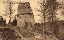 BELGIQUE - LUXEMBOURG - FLORENVILLE - Ruines De L'Abbaye D'Orval - Tour Des Braconniers. - Florenville