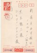 Japon Entier Postal N° 16 -  Repiqué  - Verso Illustré Dessin Chat  - Repiquage - Postales