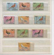 BHOUTAN - Faune - Oiseaux : Faisans Endémiques - Bhoutan