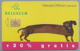 BE.- België. Telecard.- BELGACOM. . - EXTRA. TEKKEL - 200 BEF. 4,96 EUR. - OJ 047341 - België