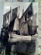 BARCHE  DA PESCA IN ADRIATICO VB1964 PESARO  GM20108 - Pesca