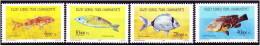 Cipro Turca - 1996 - Nuovo/new MNH - Pesci - Mi N. 420/23 - Ongebruikt