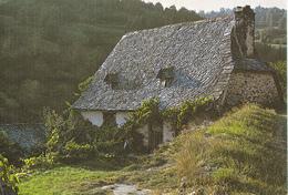 TOIT DE LAUZES - Saint Flour
