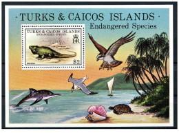 Turks & Caicos - 1979 - Nuovo/new MNH - Specie In Pericolo - Mi Block N. 14 - Turks- En Caicoseilanden
