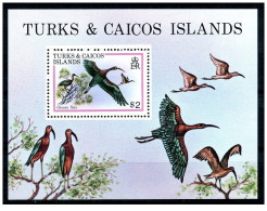 Turks & Caicos - 1980 - Nuovo/new MNH - Uccelli - Mi Block N. 21 - Turks E Caicos