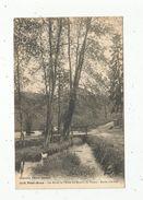 Cp, 29 , PONT AVEN , Les Bords De L'Aven Au Moulin Du Plessis, étude D'arbres , Vierge - Pont Aven
