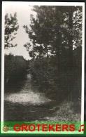 NES Op Ameland Grote Bosweg 1948 - Ameland