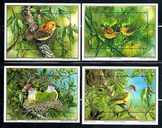 "Cook Islands     ""Birds""      4 Souvenir Sheets Without WWF Emblem        SC# 1020-23    MNH     SCV$  14.00 - Cook"