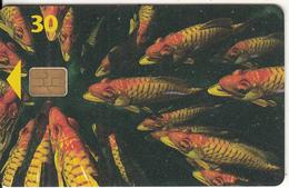 DENMARK(chip) - Fish, Chip 5, CN : 6507, 11/96, Used - Denmark