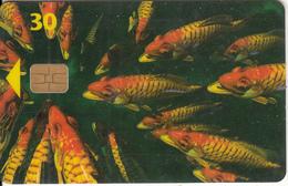 DENMARK(chip) - Fish, Chip 4, CN : 6500, 09/96, Used - Denmark