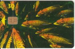 DENMARK(chip) - Fish, Chip 3, CN : 6500, 09/96, Used - Denmark