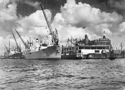 "C P S M  Bateau Paquebot  "" Waterman  "" Rotterdam Holland Amerika Line 1945 Portland U S A - Paquebote"