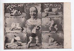 CIRQUE - TOCH TARD - Zirkus