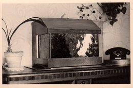 Photo Originale Aquarium Et Téléphone Vers 1960 - Objets