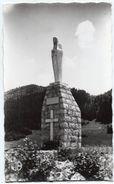 Ain - LE POIZAT - La Vierge Du Crêt - Ed. BL, Lagnieu - Cpsm - France