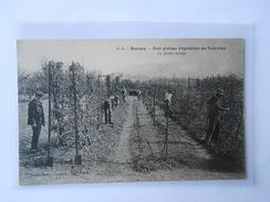 CPA DANDO BERRY 790 RENNES Ecole Pratique D'Agriculture Des Trois-Croix Le Jardin Fruiter - Rennes