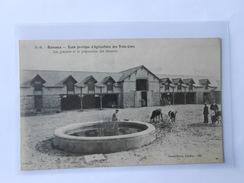 CPA DANDO BERRY 792 RENNES Ecole Pratique D'Agriculture Des Trois-Croix Les Greniers Et La Préparation Des Aliments - Rennes