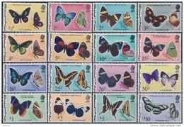 Belize Butterflies - Vlinders