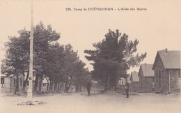Camp De Coetquidan L'allée Des Sapins - Other Municipalities